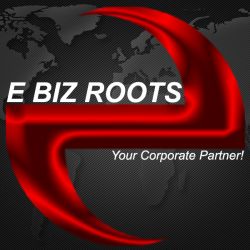 http://www.pakpositions.com/company/e-biz-roots