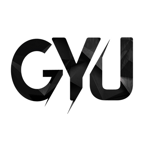 https://www.pakpositions.com/company/gyu